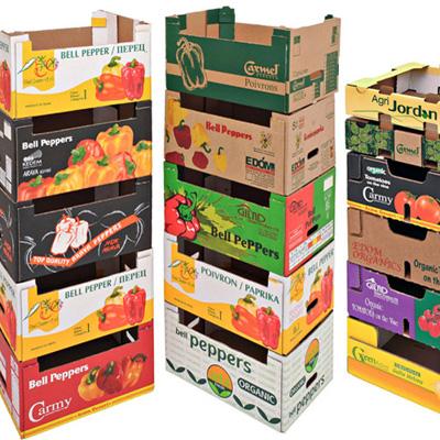 קופסאות מיוצרות ממגשי מבלט